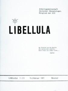 libellula-1-1