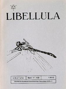 libellula-11-1