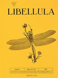 libellula-16-1